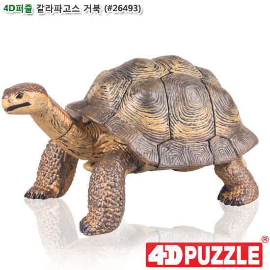 [더산아이]4D퍼즐 갈라파고스 거북 (#26493)