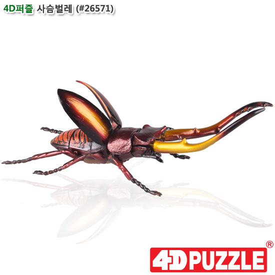 [더산아이]4D퍼즐 사슴벌레 (#26571)