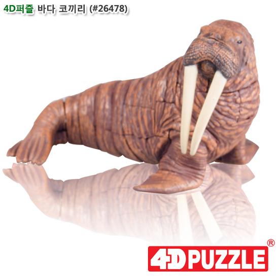 [더산아이]4D퍼즐 바다코끼리 (#26478)
